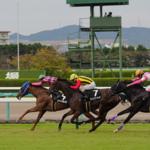 阪神競馬場と京都競馬場、子供と行くならどっち?